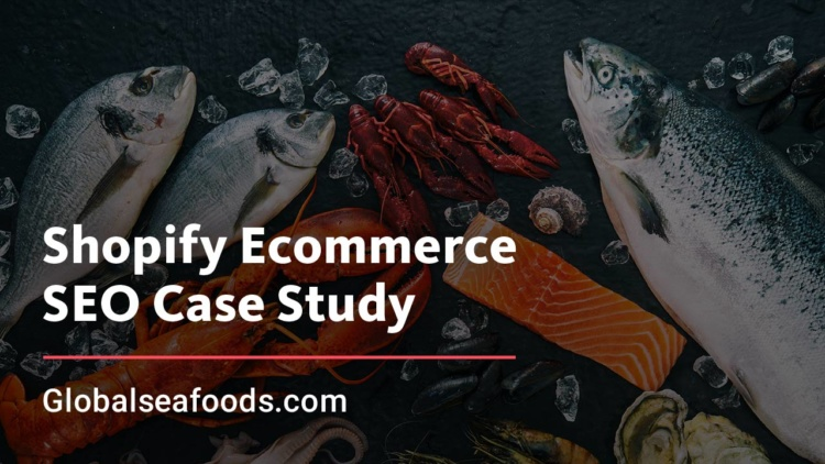 Shopify E-commerce SEO Case Study